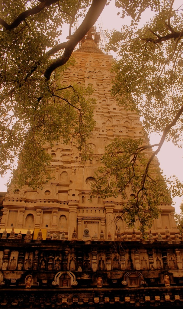 Mayabodhi temple view from pipal tree