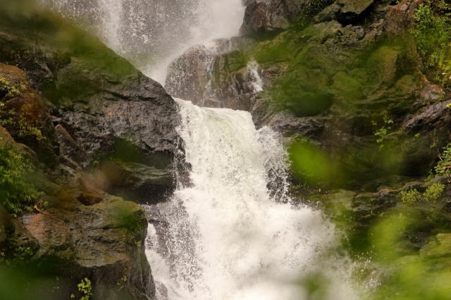 Irruppu falls which lies in Brahmagiri wildlife sanctuary.
