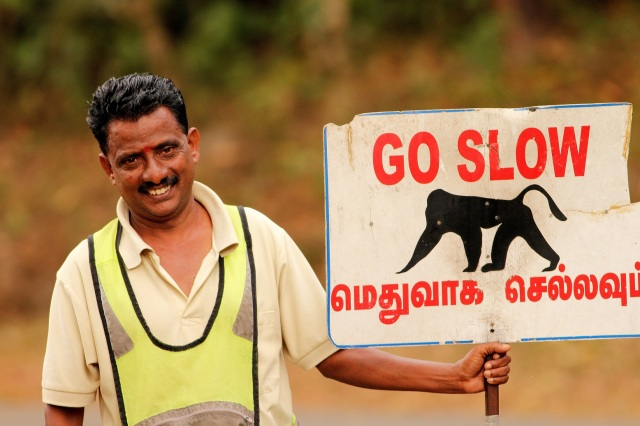 Guy showing the board for the safety of Lion Tailed macaque - Valparai