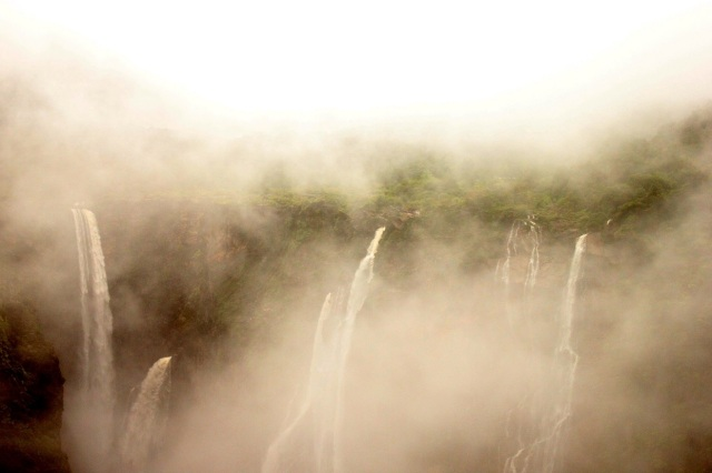 Misty at jog falls