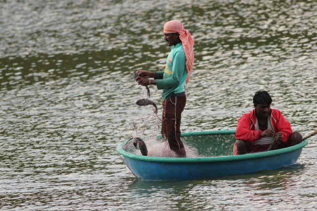 Fishing at full swing