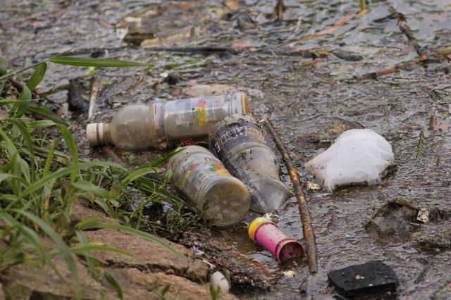 Plastic dumping in Lake